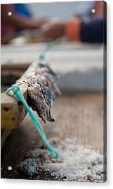 Bait On Hooks  Acrylic Print