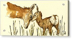 Bambi Deer Acrylic Print by Juan  Bosco