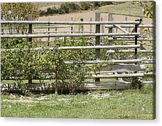 Bamboo Fence In A Pasture Acrylic Print by Robert Hamm