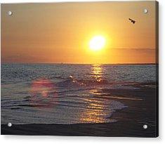 Beach #6 Acrylic Print