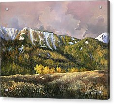 Acrylic Print featuring the painting Bear Claw by Lynne Wright
