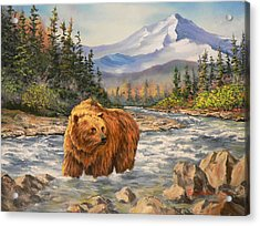 Bear Country Acrylic Print by Gracia  Molloy