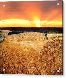 Beautiful Straw Bales Acrylic Print by Boon Mee