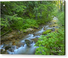 Big Creek Acrylic Print