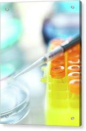 Biomedical Research Acrylic Print by Tek Image