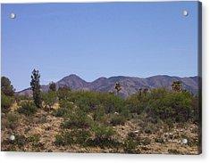 Biosphere View Acrylic Print