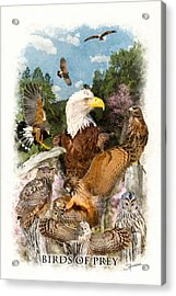 Birds Of Prey Acrylic Print
