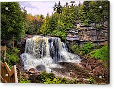 Blackwater Falls Sp Acrylic Print