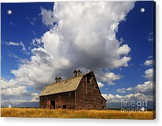 Blasdel Barn Acrylic Print by Mark Kiver