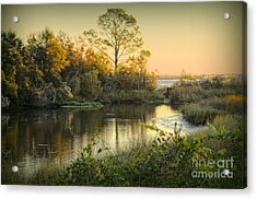 Acrylic Print featuring the photograph Blessed Morning by Maddalena McDonald