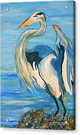 Blue Heron II Acrylic Print