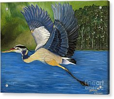 Acrylic Print featuring the painting Blue Heron In Flight by Brenda Brown