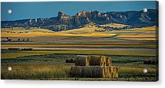 Bluff Country Acrylic Print