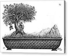 Bonsai Acrylic Print by Boyan Donev