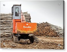 Boreal Forest Felled For Tar Sands Mine Acrylic Print by Ashley Cooper