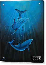 Bottle-nose Dolphins Acrylic Print by Preethi Mathialagan