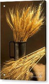 Bouquet Of Wheat Acrylic Print
