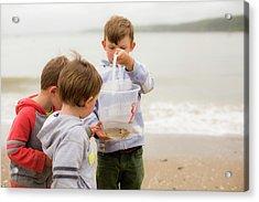 Boys Holding Crab Acrylic Print by Samuel Ashfield