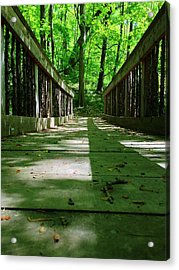 Bridge In The Woods Acrylic Print by Andrew Martin