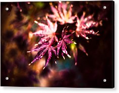Bright Leaves Acrylic Print