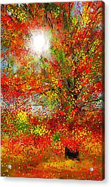 Brighter Day Acrylic Print by Lourry Legarde