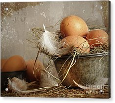 Brown Speckled Eggs  In Old Tin Bowl Acrylic Print by Sandra Cunningham