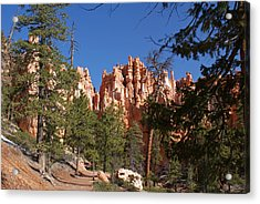 Bryce Canyon National Park Acrylic Print by Michael J Bauer