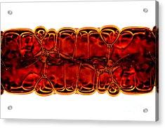 Bubbles Acrylic Print by Michal Boubin