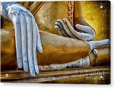 Buddha Golden Acrylic Print by Adrian Evans