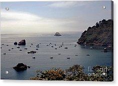 Acrylic Print featuring the photograph Busy Harbor by Sharon Elliott