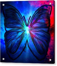 Butterfly Acrylic Print by T T