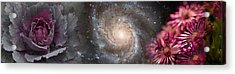 Cabbage With Galaxy And Pink Flowers Acrylic Print