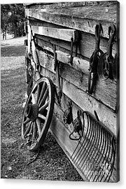 Cabin Wall Acrylic Print by Julie Dant
