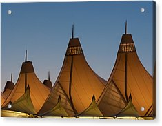 Canopies At Dusk Acrylic Print by Brian  Weiss