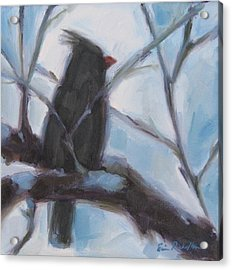 Cardinal Reposed Acrylic Print