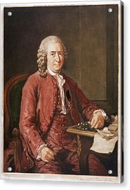 Carl Von Linne Known As Linnaeus Acrylic Print by Mary Evans Picture Library