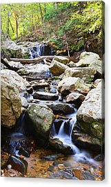 Acrylic Print featuring the photograph Cascade Falls by Dana Sohr