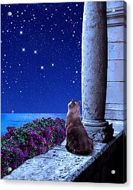 Cassiopeia Acrylic Print by Kathleen Horner