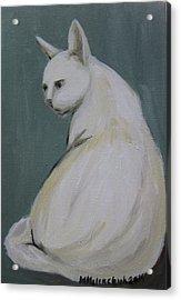 Cat 2014 Acrylic Print by Maria Melenchuk