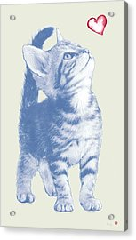Cat With Love Hart Pop Modern Art Etching Poster Acrylic Print by Kim Wang