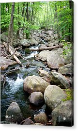 Catskills Waterfall Acrylic Print