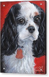 Cavalier King Charles Spaniel Acrylic Print by Hope Lane