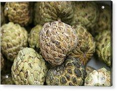 Cherimoya Fruit Annona Cherimola Acrylic Print by Bjorn Svensson