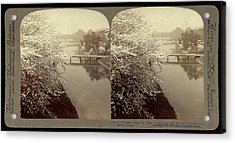Cherry-blossoms Along The Moat Surrounding The Imperial Acrylic Print
