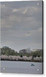 Cherry Blossoms - Washington Dc - 011319 Acrylic Print by DC Photographer