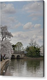 Cherry Blossoms - Washington Dc - 011330 Acrylic Print by DC Photographer