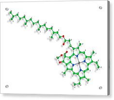Chlorophyll A Molecule Acrylic Print by Carlos Clarivan