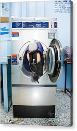 Cleaning Lady Trapped In Washing Machine Acrylic Print by Jorgo Photography - Wall Art Gallery