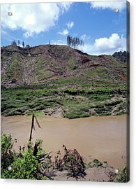 Cleared Forest Beside A Sediment-laden River Acrylic Print by Simon Fraser/science Photo Library