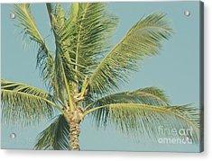 Cocos Nucifera - Niu - Palma - Po'olenalena Beach Maui Hawaii Acrylic Print by Sharon Mau